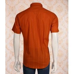 Shirt-24209